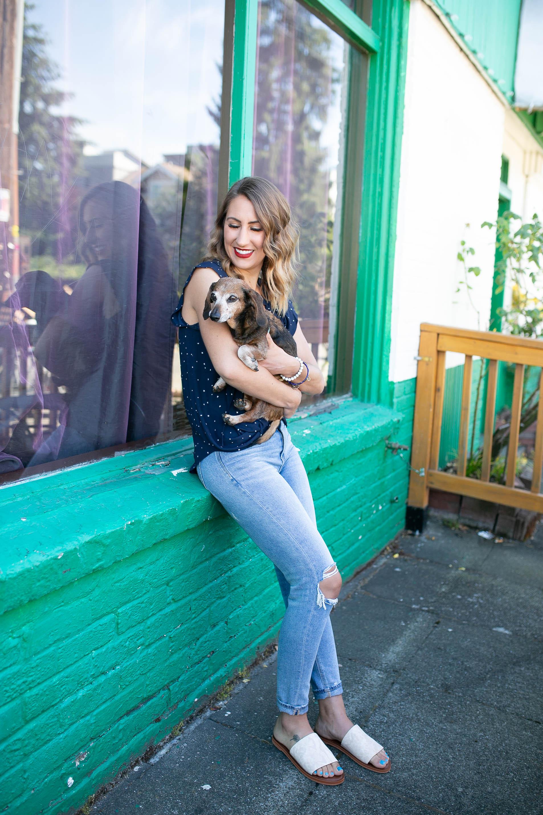 diary of this girl megan, senior dog, dachshund