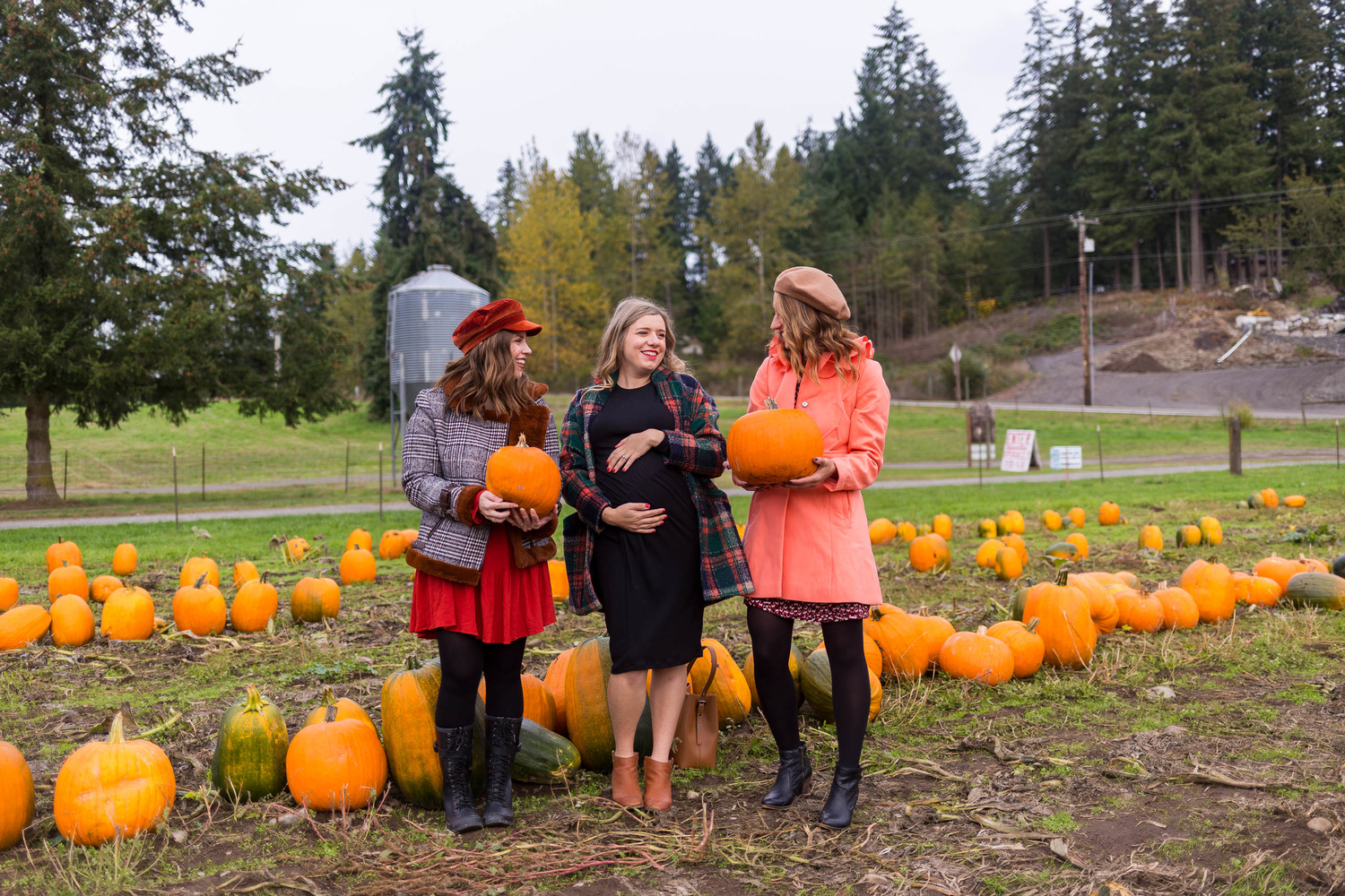 seattle blogger, pumpkin farm, diary of this girl
