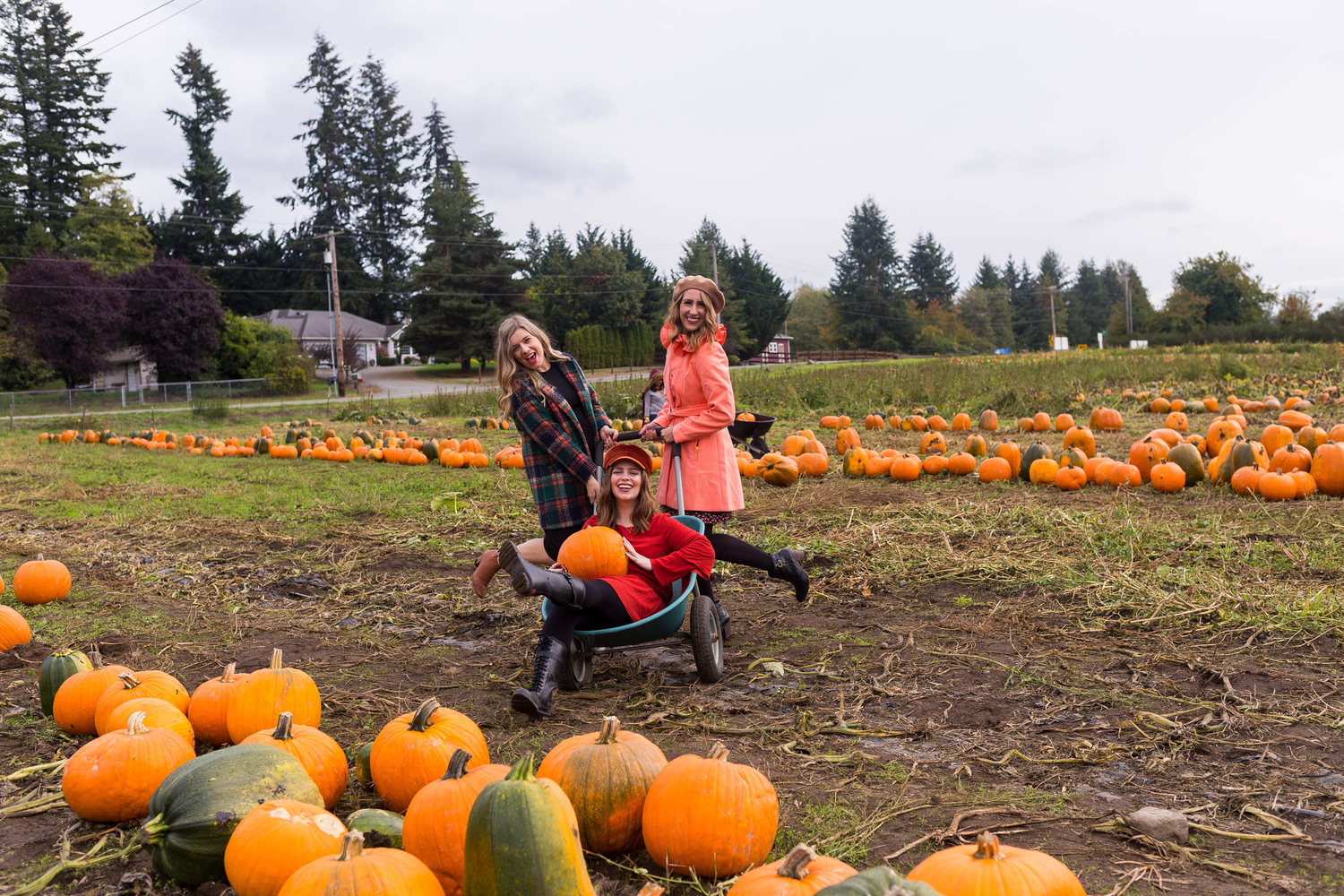 seattle fashion blogger, diary of this girl megan, pupkin farm